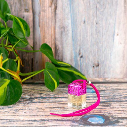 Lemongrass & Ginger Car Diffuser - Pink