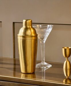 Rahuri Cocktail Shaker